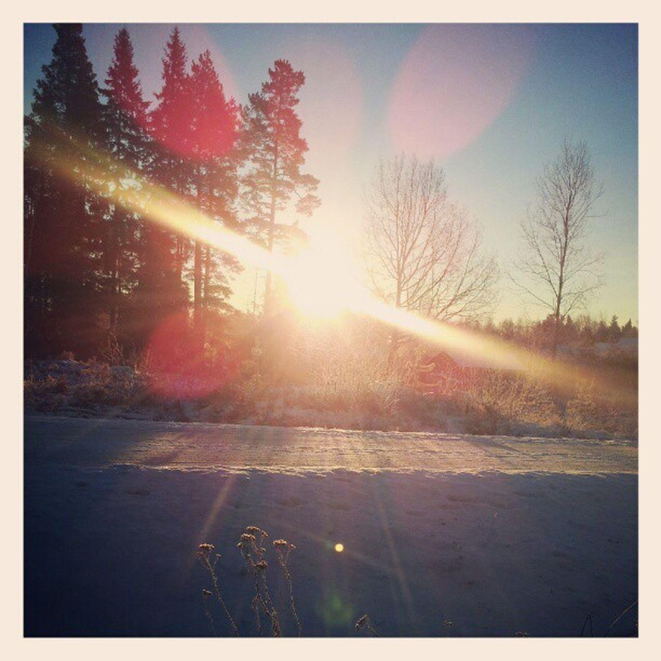 Godmorgon! ;) Beautiful Nature äntligen Se solen