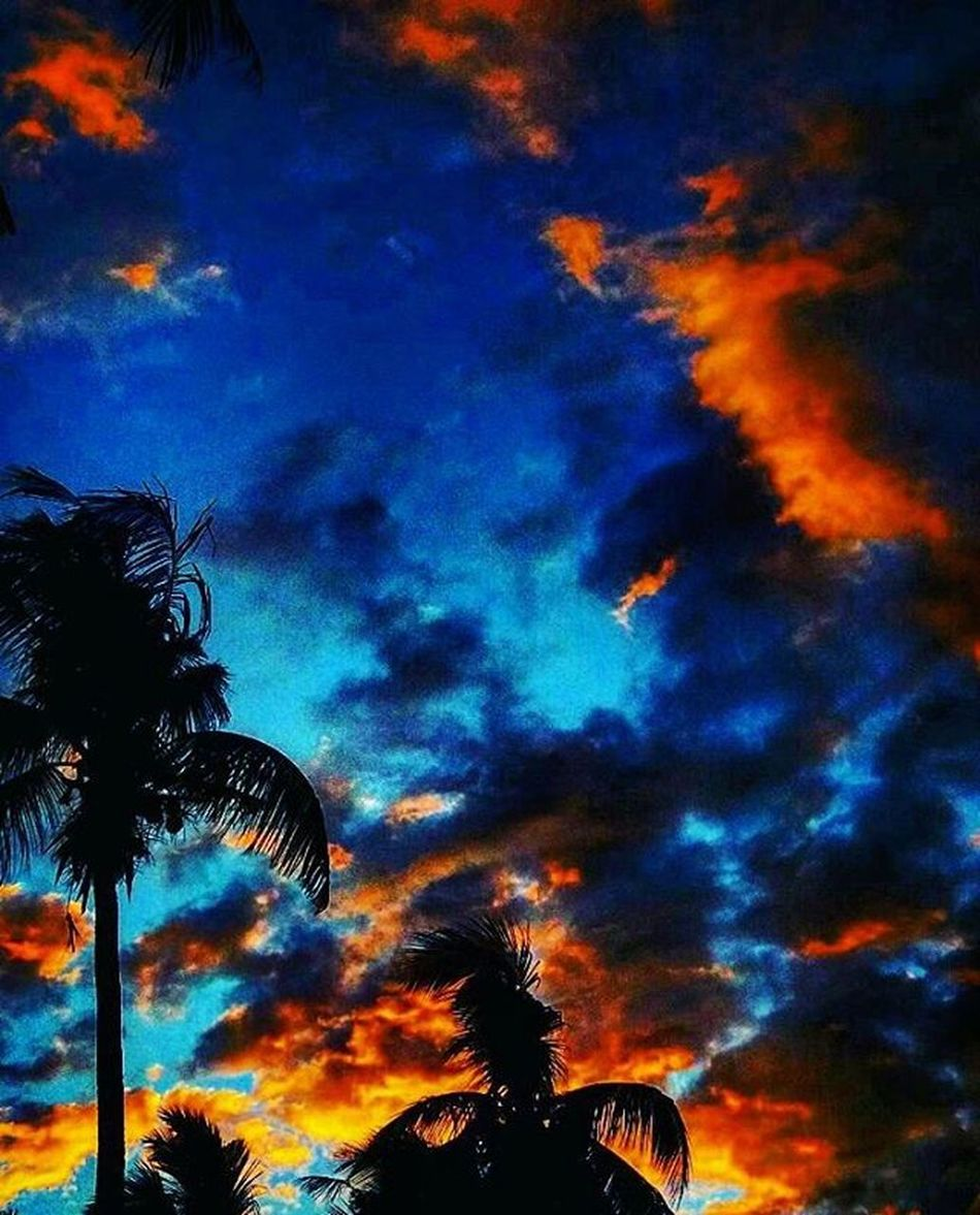 This Picture is ❤❤❤👌👌 Sunset Clouds Snapseeddaily Snapshot Snapseedph Snapshot Snapseed Vscocamphotos VSCOPH Vscogood VSCO