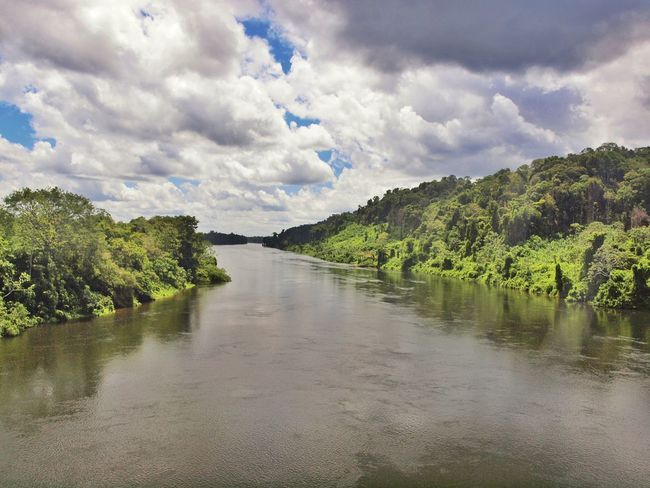 River Jungle River South America Jungle River Jungle Rainforest Suriname Surinam Nature Photography Nature Clouds And Sky