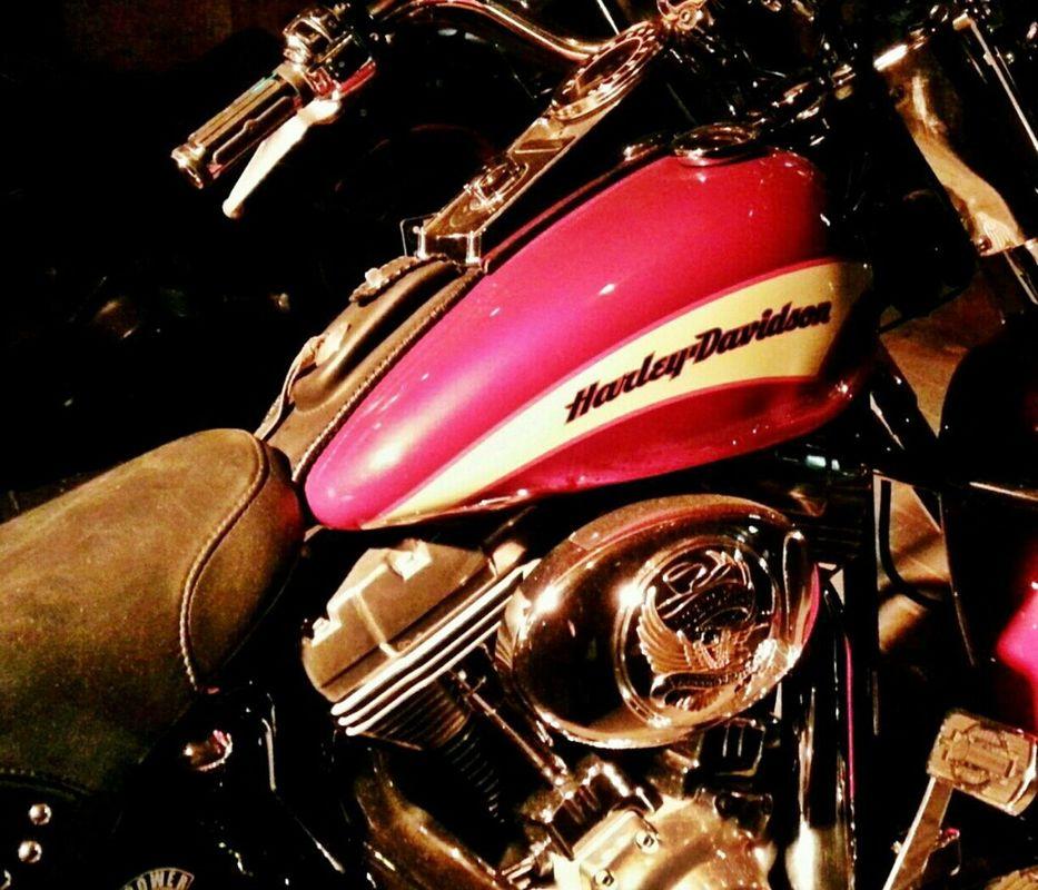 Harley Davidson by Heike Schein
