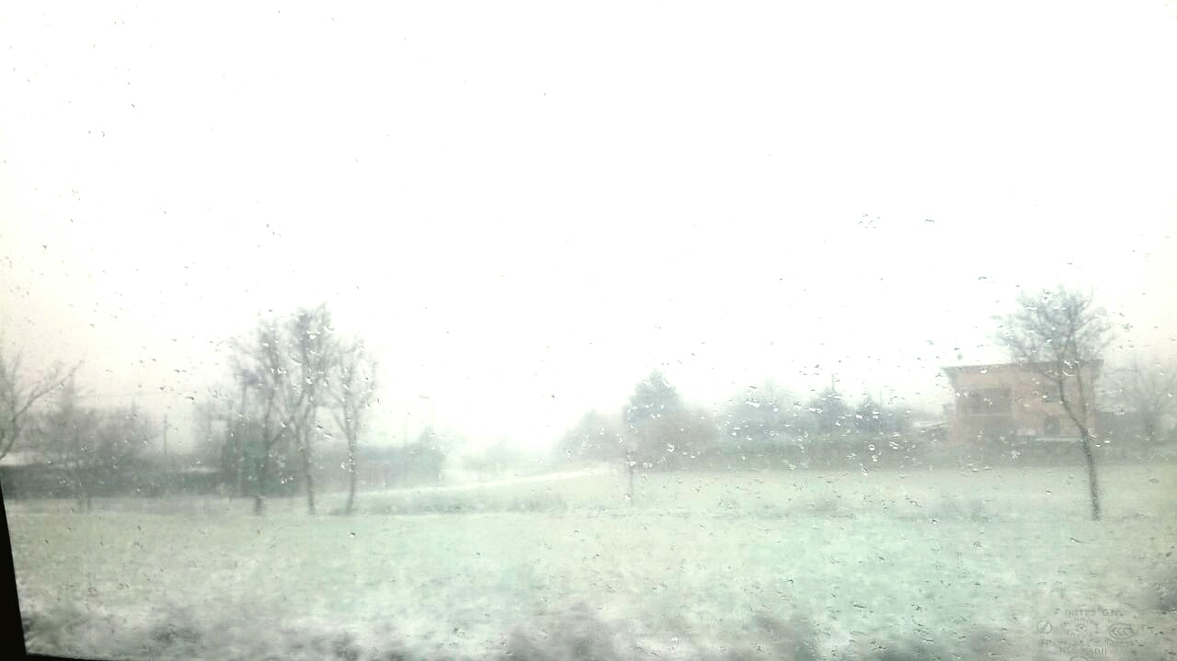 winter, weather, cold temperature, clear sky, snow, season, field, copy space, tree, tranquility, landscape, tranquil scene, nature, beauty in nature, water, scenics, foggy, frozen, day