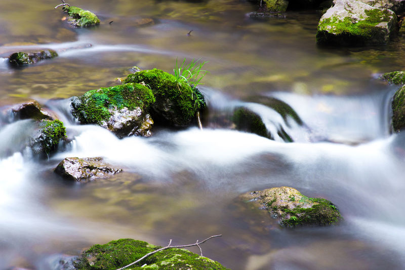 Myrafälle waterfall, Austria Beauty In Nature Exposure Flowing Water Flowing Water Forest Green Idyllic Long Exposure Moss Nature Naturepark Non-urban Scene Outdoors Rock Rock - Object Rock Formation Undergrowth Water