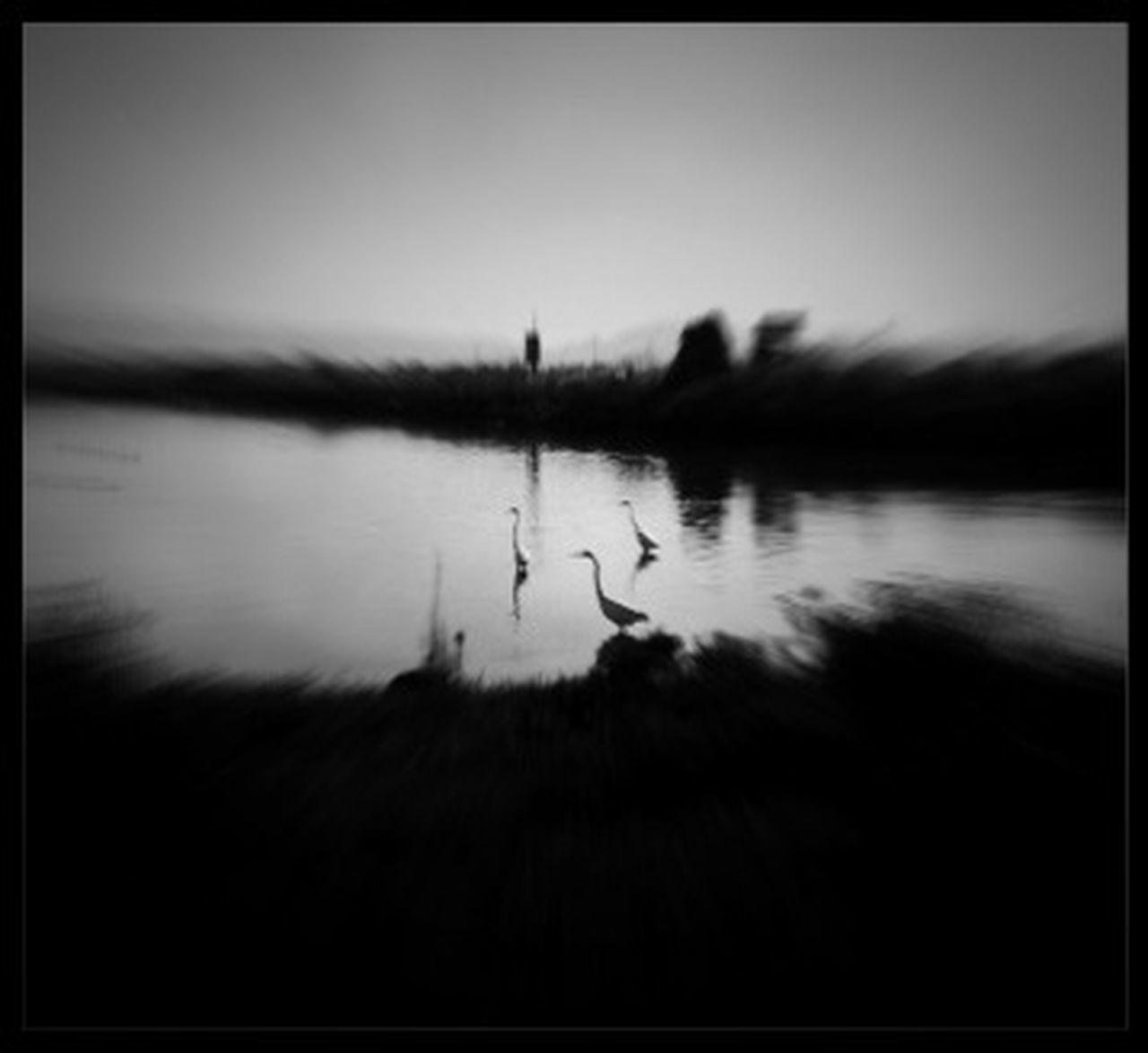 animal themes, animals in the wild, bird, one animal, reflection, animal wildlife, silhouette, no people, lake, outdoors, nature, day, water, sky