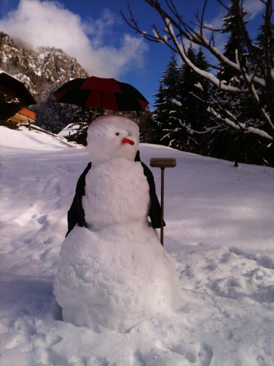 Beautiful stock photos of snowman, cold temperature, winter, snow, season