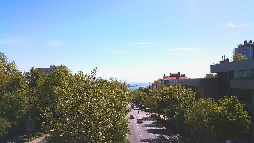Sunshine Bosphorus Bosphorus, Istanbul Istanbul Yildiz Barbaros Bulvarı April 2016 Sunny Day Saturday Spring Trees Trees And Sky Sea Blue Sea Blue Sea And Blue Sky Sea And Sky Green And Blue Urban Rooftops Cars Boulevard Ship Besiktas