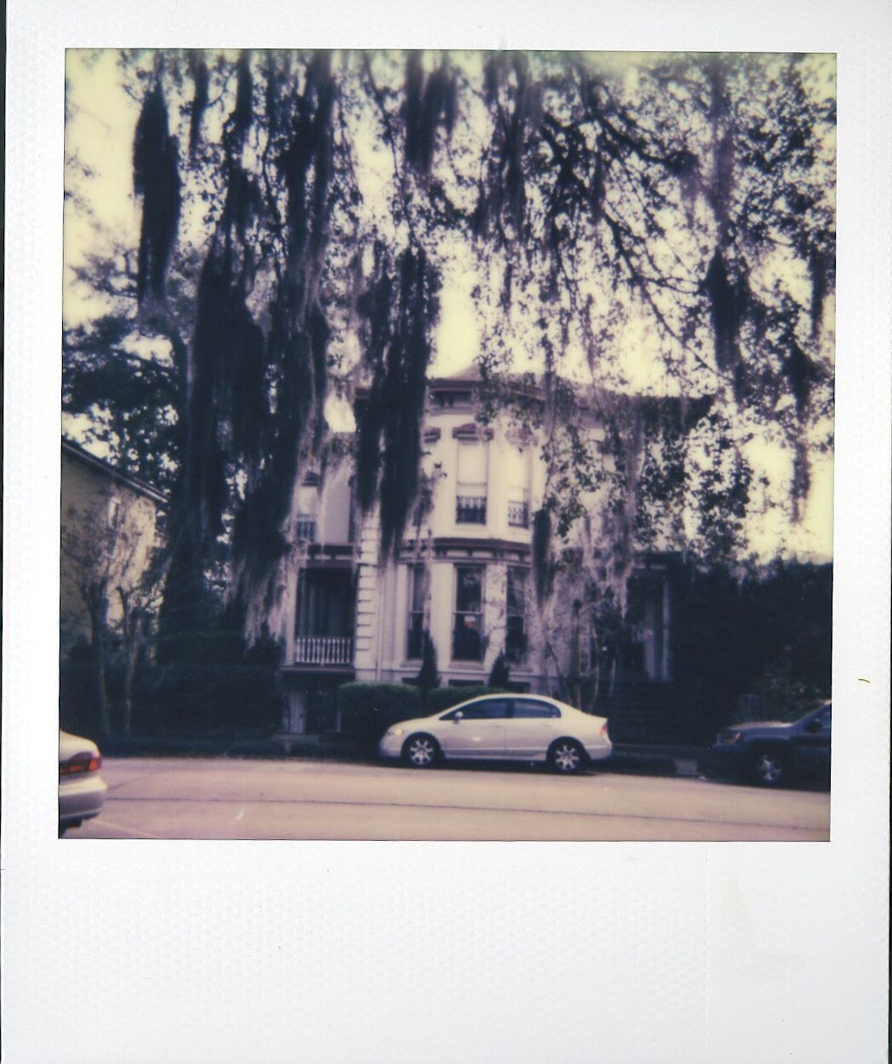 love my car portrait series😍 Polaroid Photographer Polaroid Photography Polaroid 600 Polaroid Forsyth Park Historic Savannah Georgia