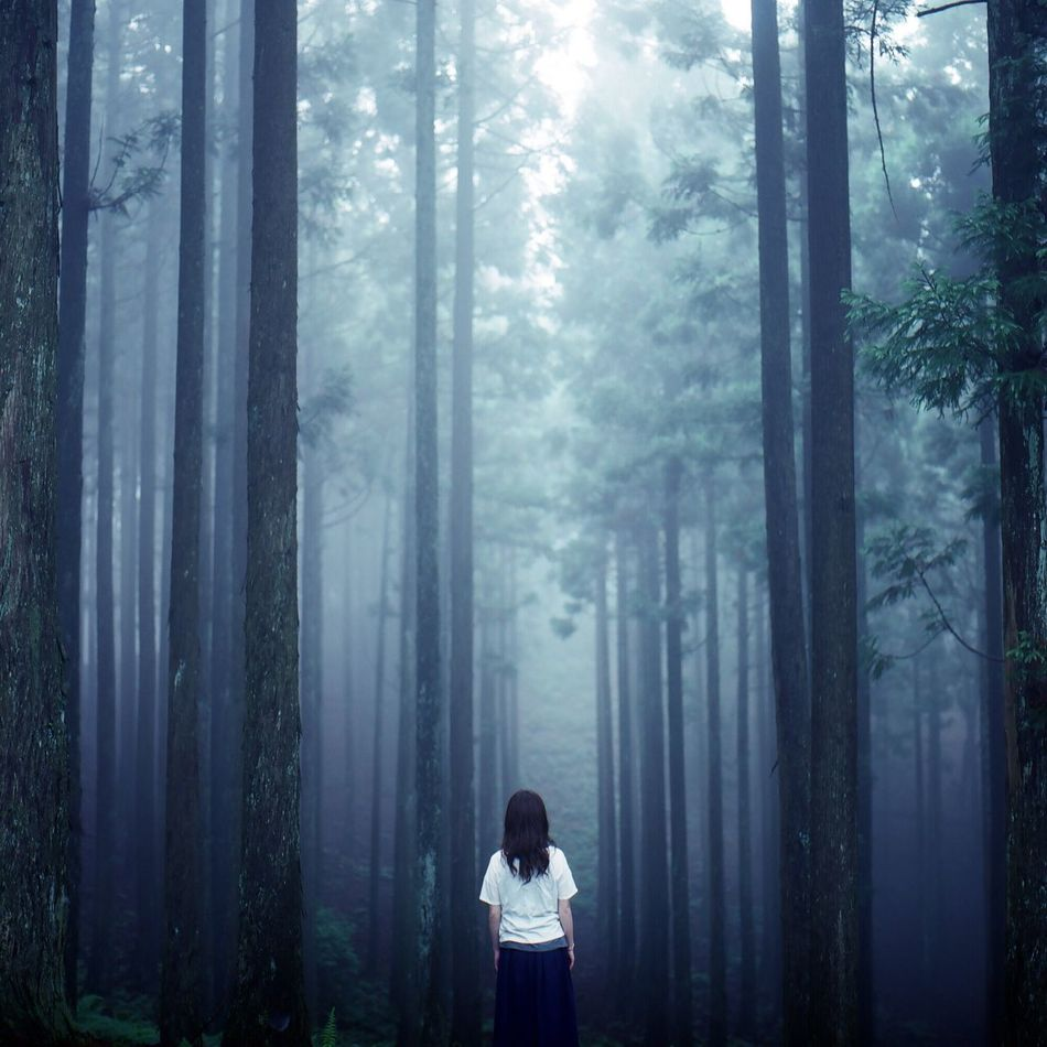 Beautiful stock photos of forest, Beauty In Nature, Casual Clothing, Cold Temperature, Day