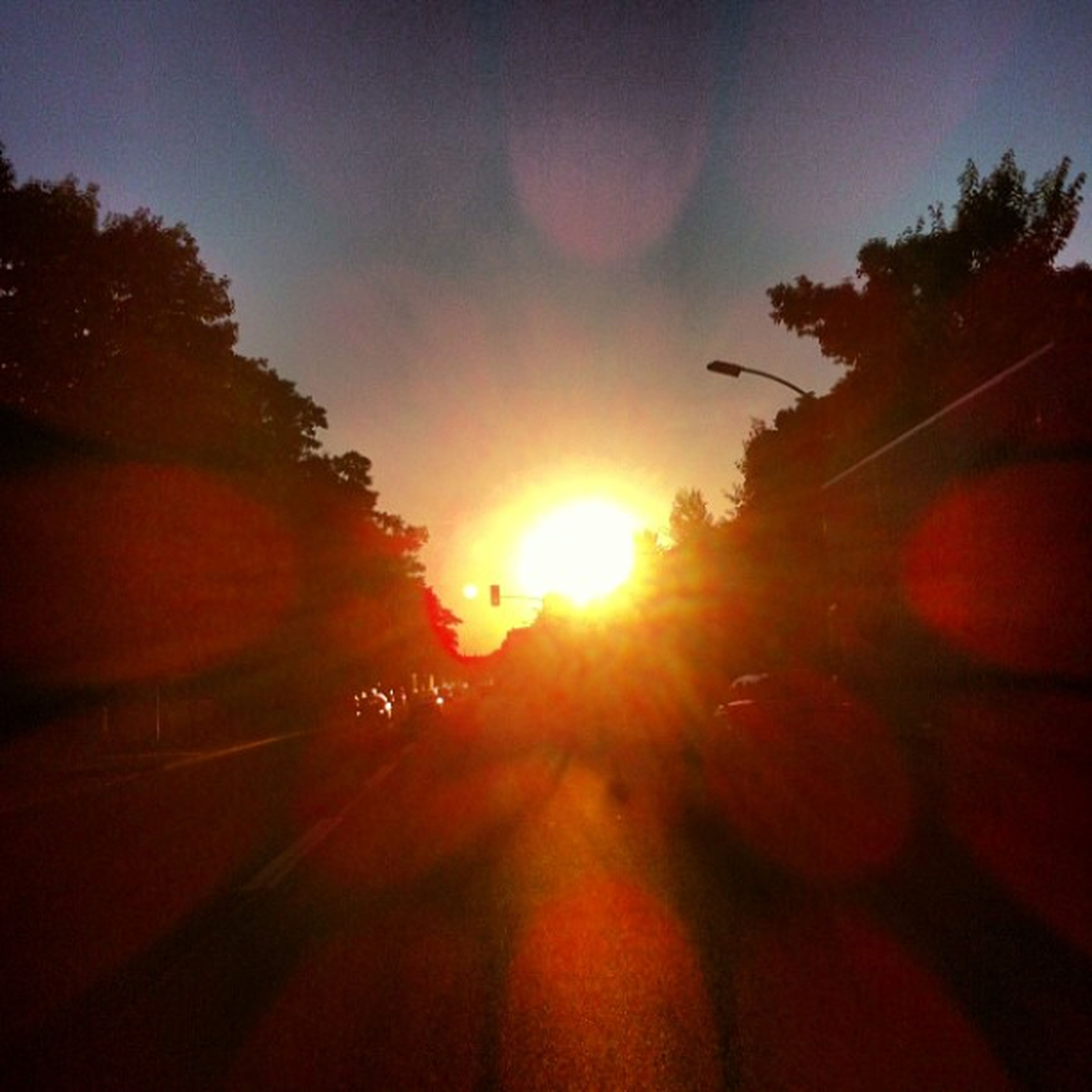 sun, sunset, tree, lens flare, sunbeam, sunlight, transportation, silhouette, orange color, sky, nature, road, tranquility, car, no people, beauty in nature, outdoors, tranquil scene, clear sky, scenics