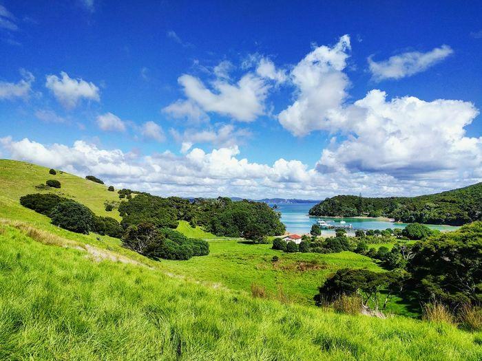 Otehei Bay, Paihia First Eyeem Photo