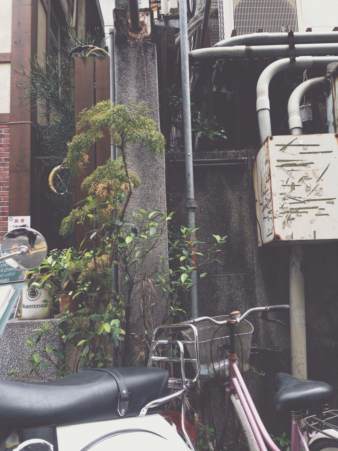 Vespa Taipei