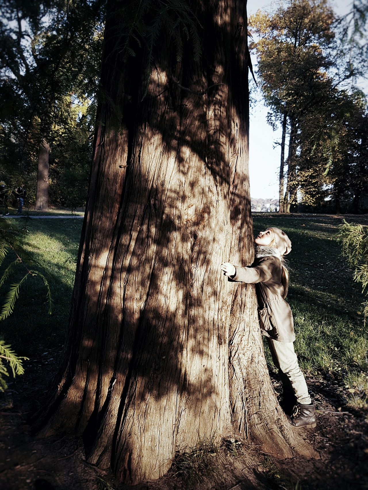 Old friend... Tree Real People One Person Day Outdoors People Childhood Child One Child Hugging A Tree Hug Enjoy The New Normal Beauty In Nature Light And Shadow Shadowplay Autumn Playing Outside Finding New Frontiers Adapted To The City