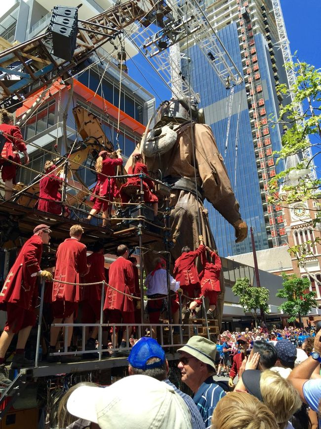 PERTH, AUSTRALIA-FEBRUARY 14, 2015: Journey of the Giants, Giant Marionette Diver rear view, public International Arts Festival Art Art Event Australia Australianshepherd Belts And Pulleys City Cityscape Crane Crowds Culture Diver Festival Giant Human International Journey Marionette People Puppeteers Walking Winchester Wooden