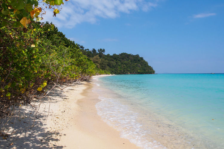 Pristine beach on Ko Rok island Andaman Sea Beach Blue Coral Reef Island Ko Rok Koh Rok Nature No People Outdoors Sand Scenics Sea Thailand Tranquil Scene Travel Travel Destinations White Sand Beach