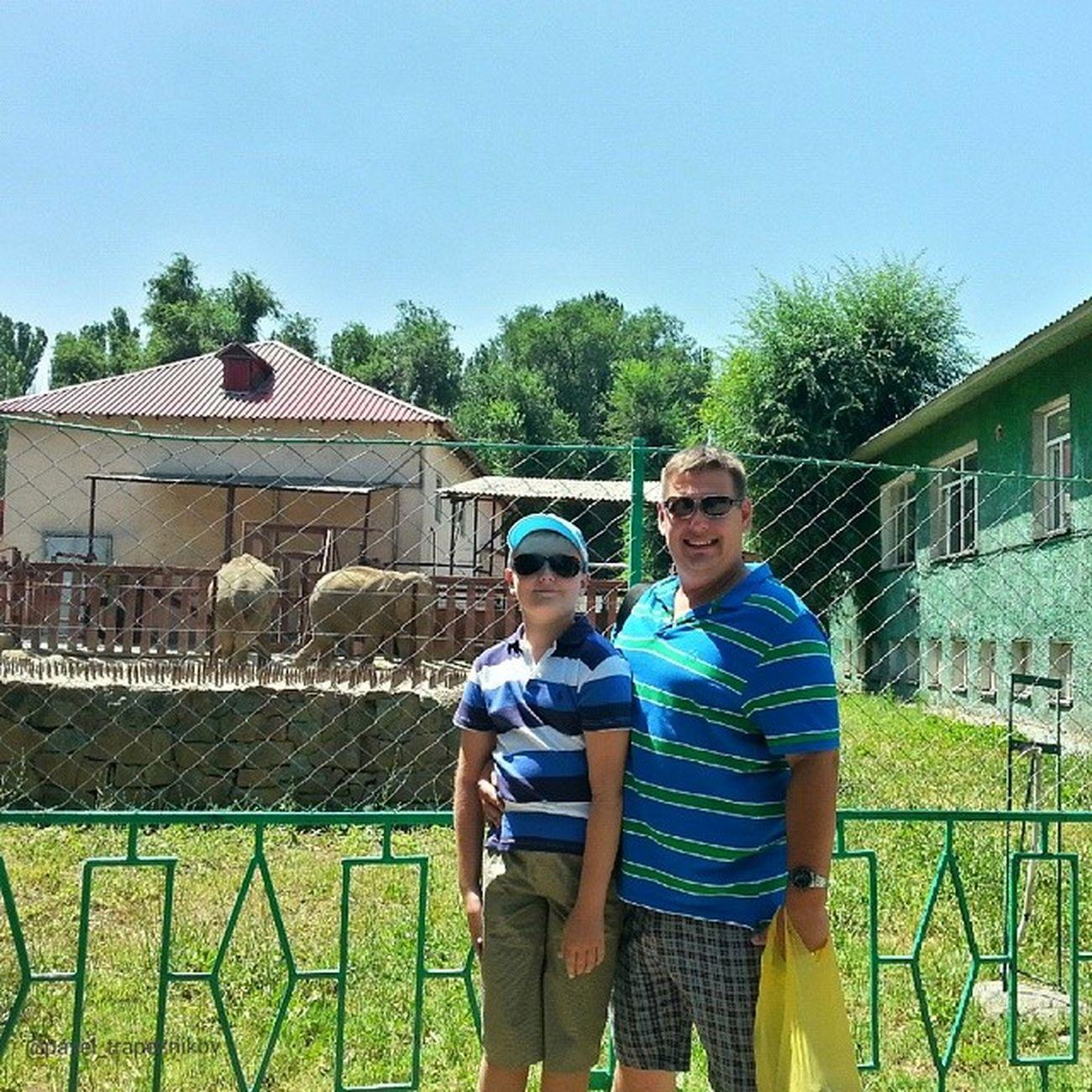 20140730 , Казахстан , алматы . Алматинский зоопарк . Мы и слоны:-)/ Kazakhstan, Almaty. Almaty Zoo. We and elephants:-)
