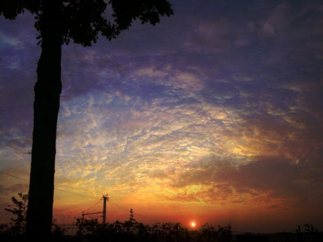 sunset, silhouette, tree, cloud - sky, sky, beauty in nature, nature, scenics, outdoors, no people, tranquil scene, growth, day