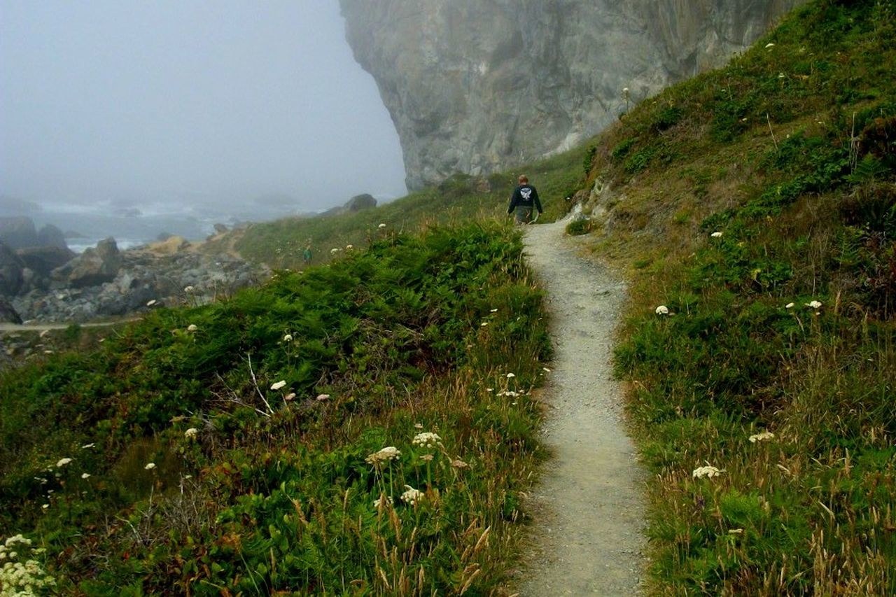 Coastal Hiking Nature On The Path Oregon Physical Geography Remote Tranquility