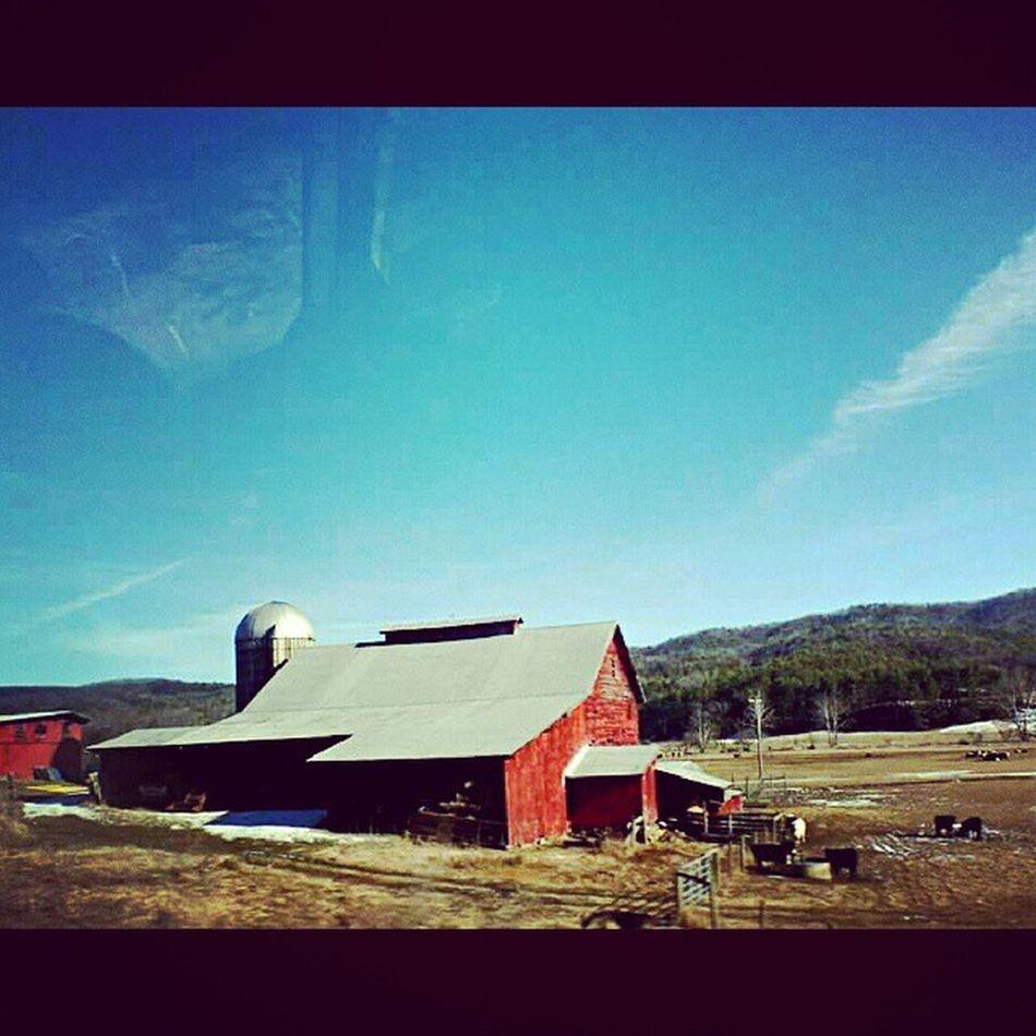 Greenbank Westvirginia Filtyfarms Ruralamerica appalachia igers_of_wv wv_igers barnsofinstagram farming gotowv bestnatureshot landscape_captures natureonly trb_rural wv_nature