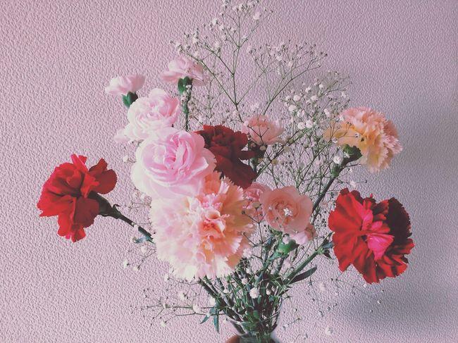 💐💓 Flower Cute Beautiful Lovely Love Surprise