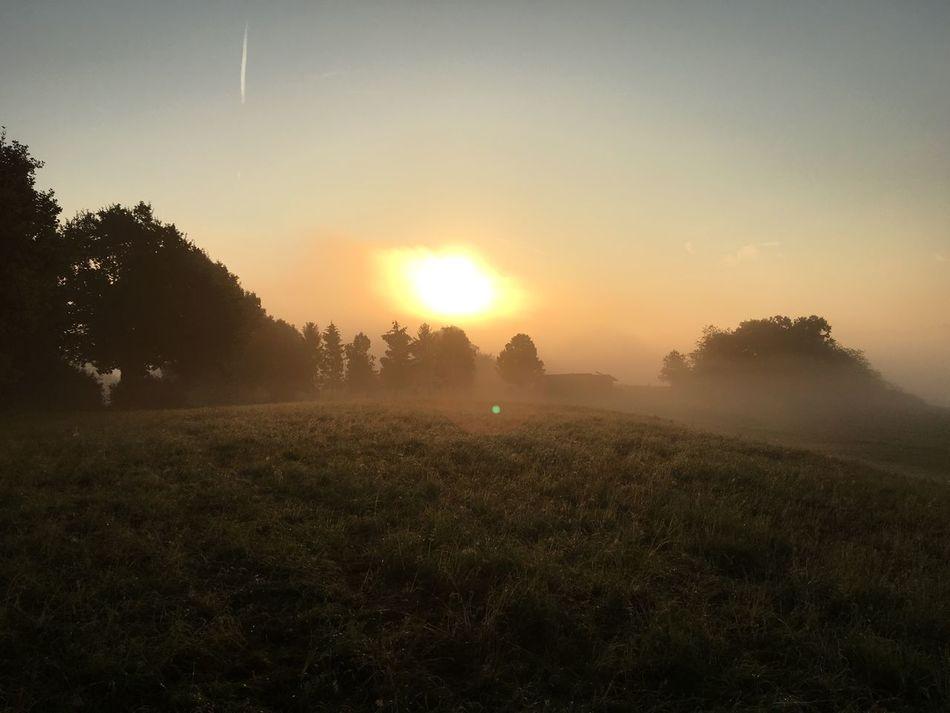 First Eyeem Photo Outdoors Sunrise