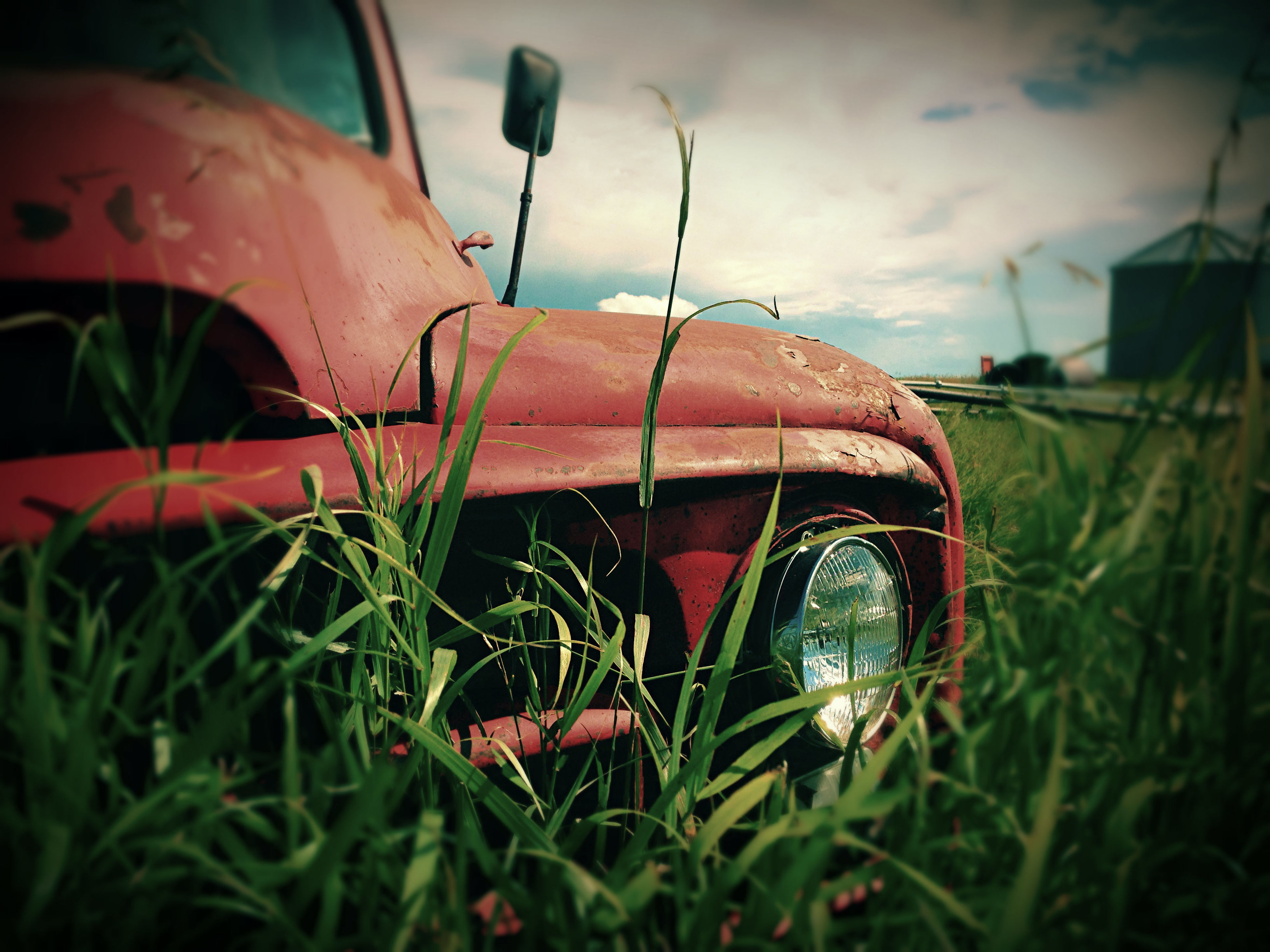 grass, field, grassy, close-up, sky, transportation, plant, mode of transport, abandoned, outdoors, red, no people, growth, nature, day, damaged, focus on foreground, selective focus, green color, metal