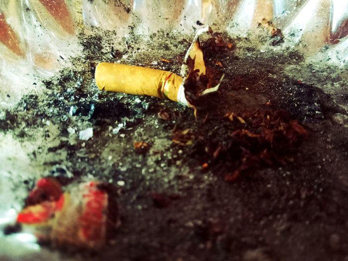 Smoking Issues Bad Habit RISK Ash no more smoke stop smoking