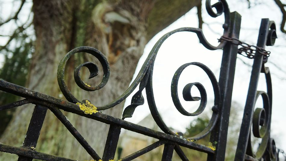 Chain Close-up Gate Gothic Locked Up Metal Nature No People Outdoors Sadness