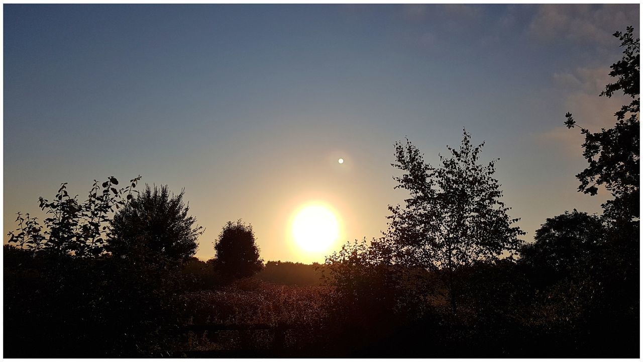 sun, tree, sunset, nature, beauty in nature, tranquility, scenics, no people, silhouette, outdoors, sky, clear sky, landscape, moon, day