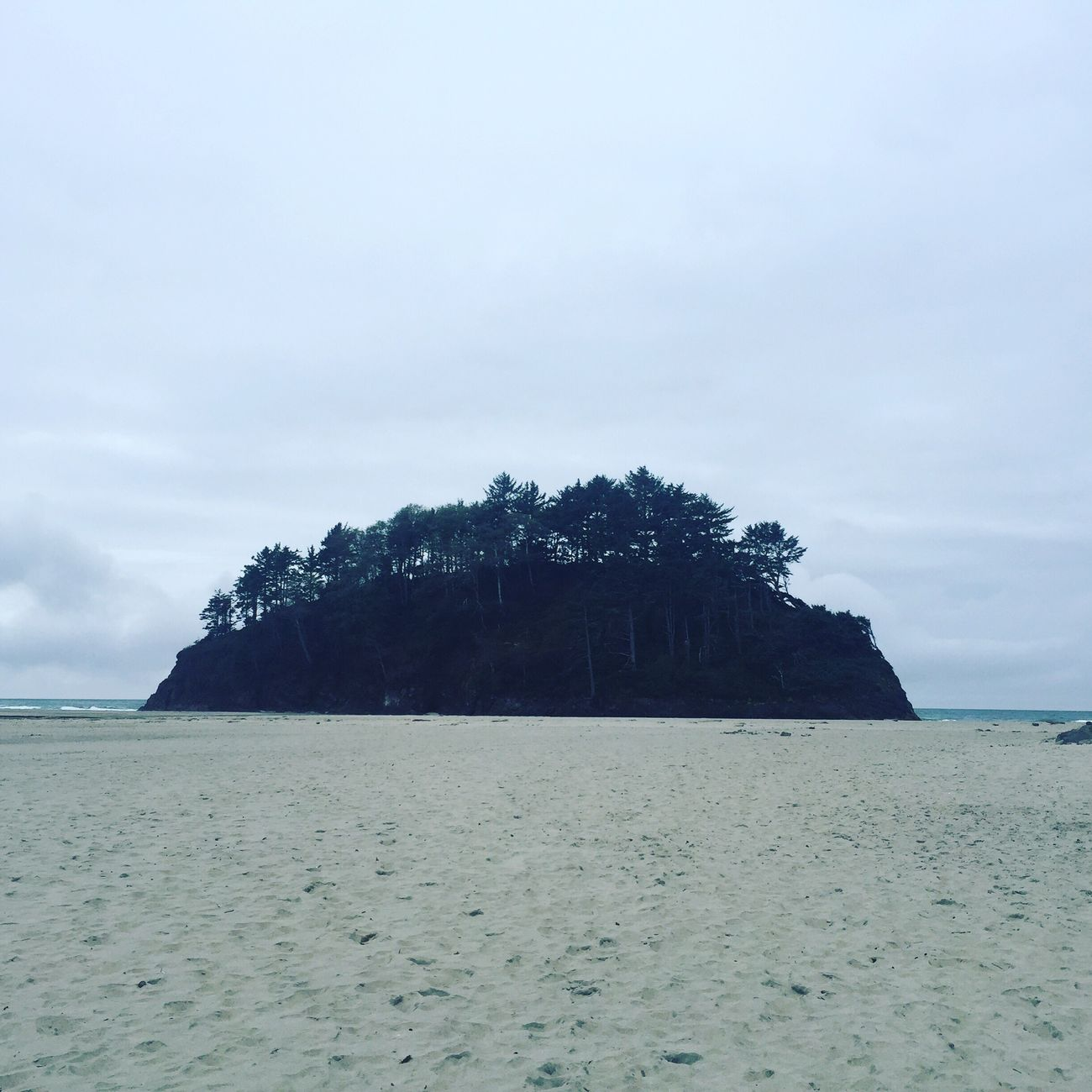 Oregon Coast Neskowin Beach PNW PNWonderland Oregon Gloomy Day
