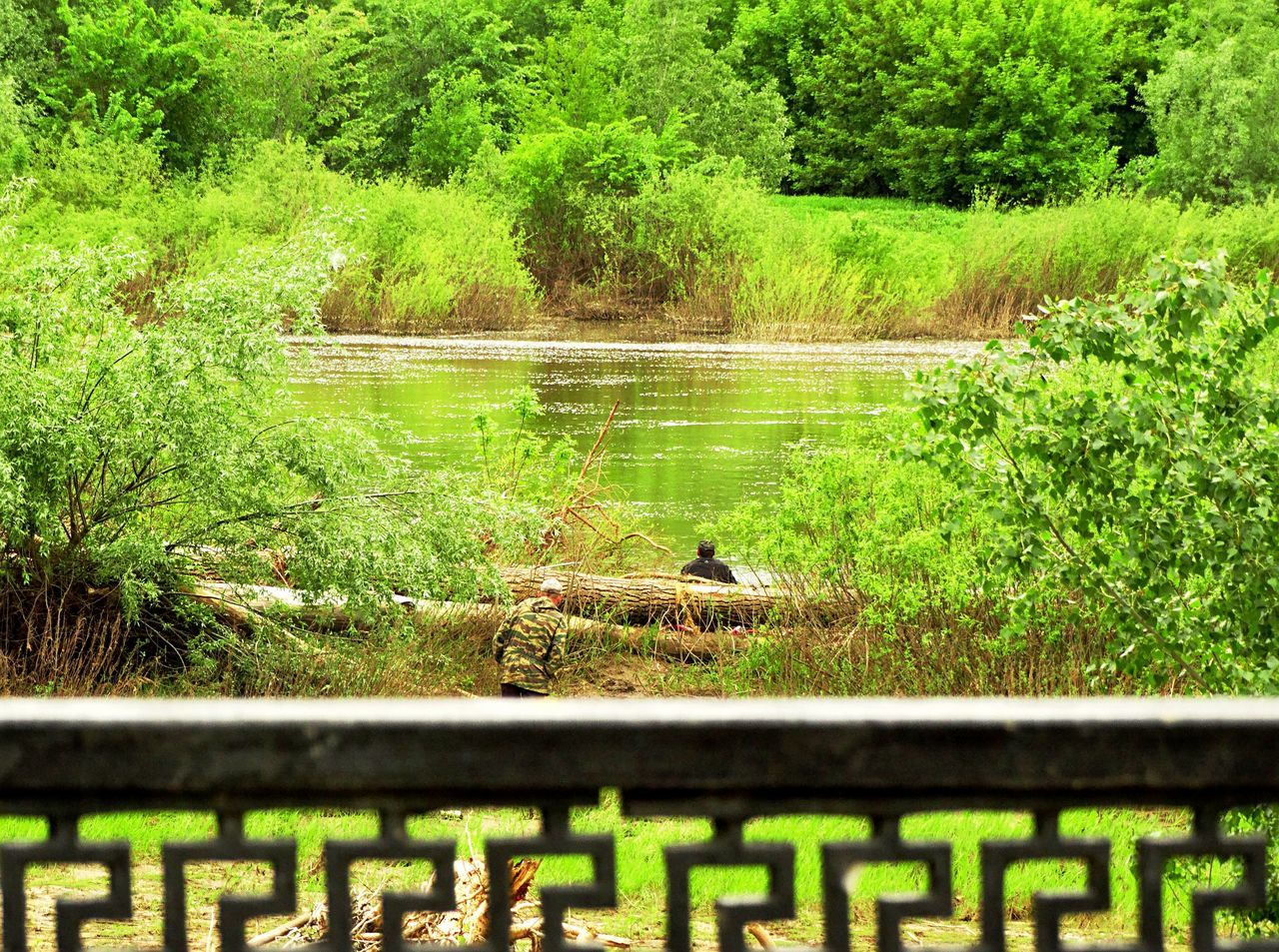 River River Ural Colors Spring Nature River View Ural People Tree Springtime Reflection Fence Trees I LOVE PHOTOGRAPHY My Favorite Photo Eye Em Nature Lover Eyeem Gallery Taking Photos. Nature Photography Grass From My Point Of View Capture The Moment Branches EyeEm Nature Lover Eye4photography  The Great Outdoors - 2016 EyeEm Awards