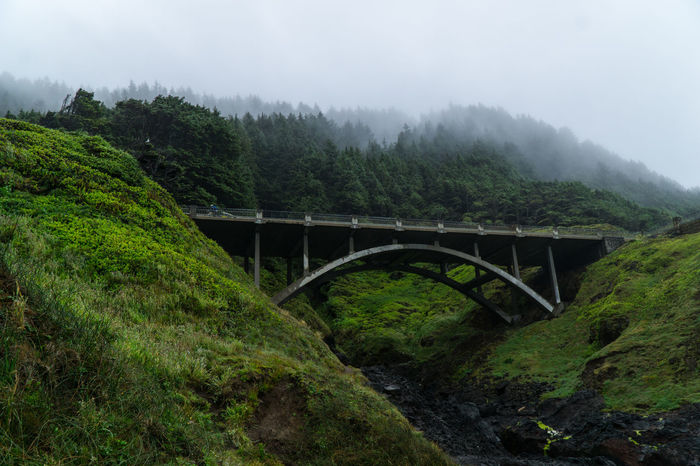 Cooks Chasm Bridge at Cape Perpetua, central Oregon coast Arch Architecture Bridge Bridge - Man Made Structure Built Structure Cape Perpetua Cloud - Sky Connection Cooks Chasim Cooks Chasm Bridge Day Engineering Fog Footbridge Growth Nature No People Oregon Oregon Coast Outdoors River Transportation Tree Viaduct Weather