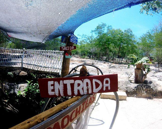 Cenotes Travel Tranquility Entrada