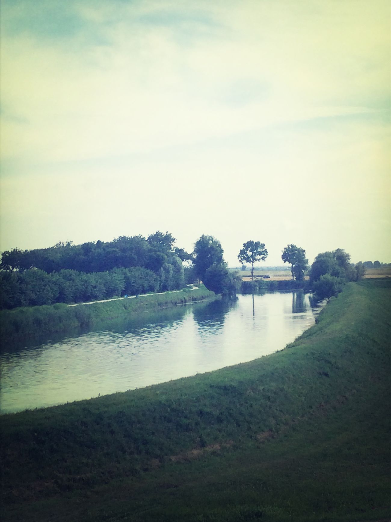 Country H-farm View
