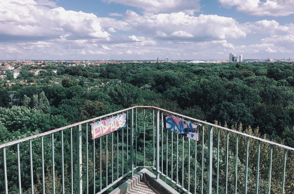Sky Tree Cloud - Sky Railing Transportation No People Day The Way Forward Outdoors Nature Growth Beauty In Nature