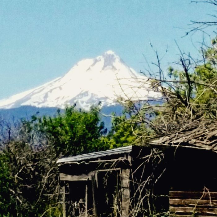 Beauty In Nature Building Day Landscape Majestic Mountain Mt.adams Tranquil Scene