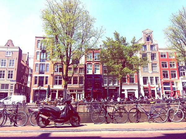 Amsterdam in may, such a beautiful city Netherlands City Streetphotography May Summer Sunshine Beautiful Dreamhome Cityscape Coffeshop Greenhouse