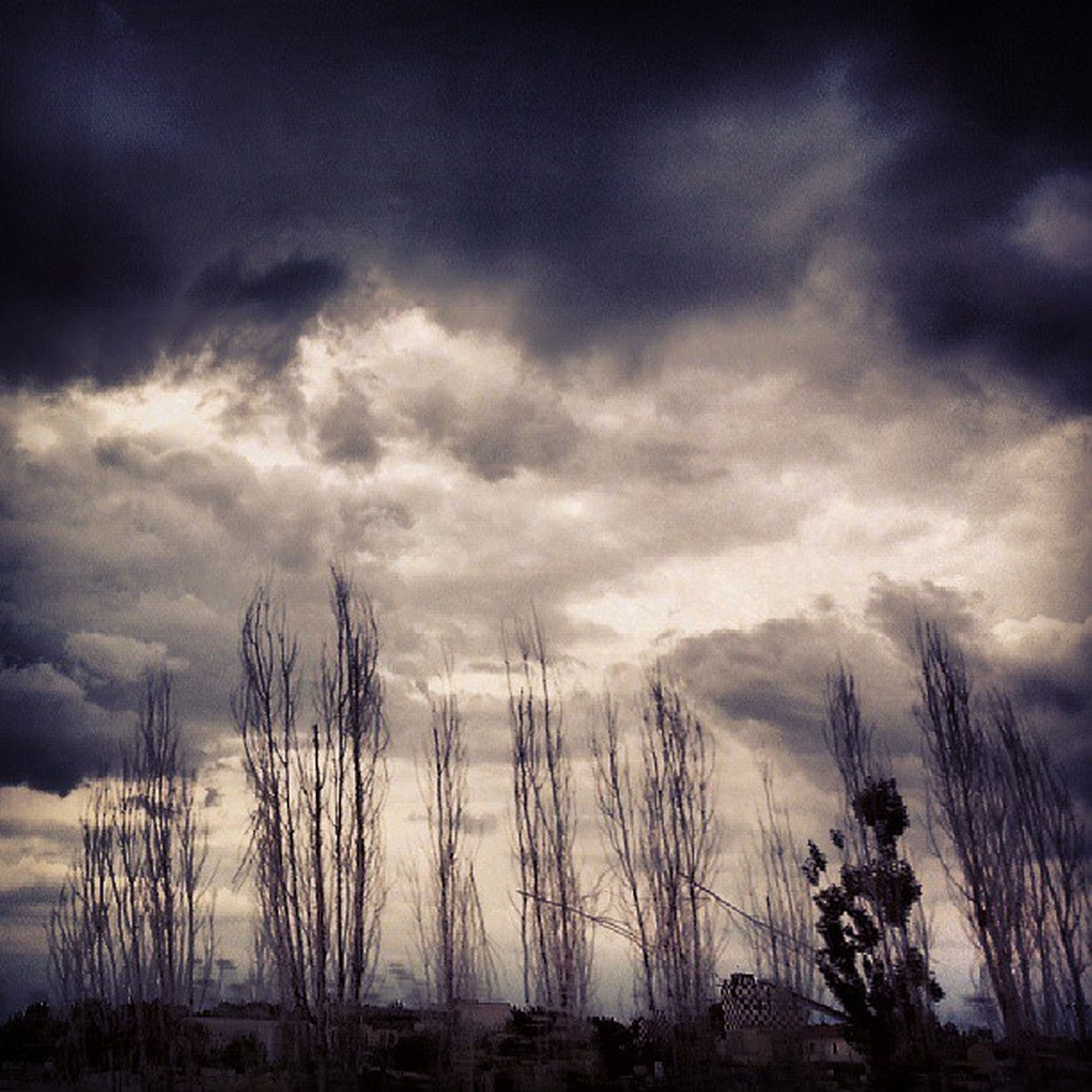 sky, cloud - sky, tranquility, cloudy, silhouette, tranquil scene, bare tree, tree, scenics, nature, beauty in nature, cloud, weather, overcast, dusk, low angle view, growth, outdoors, branch, no people
