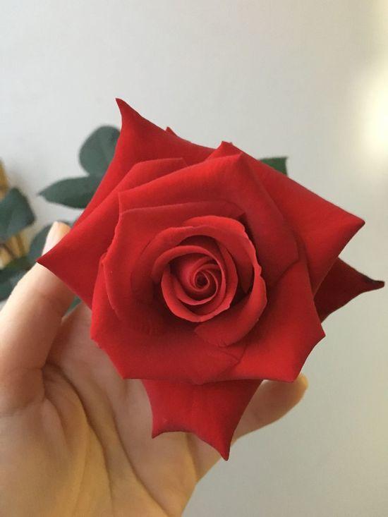 So lovely flower Lovelyrose 4me