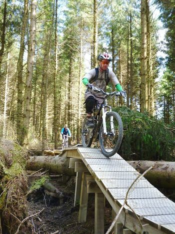 Bike Riding Sky And Trees Enjoying Life Mountain Biking Dalby Forest
