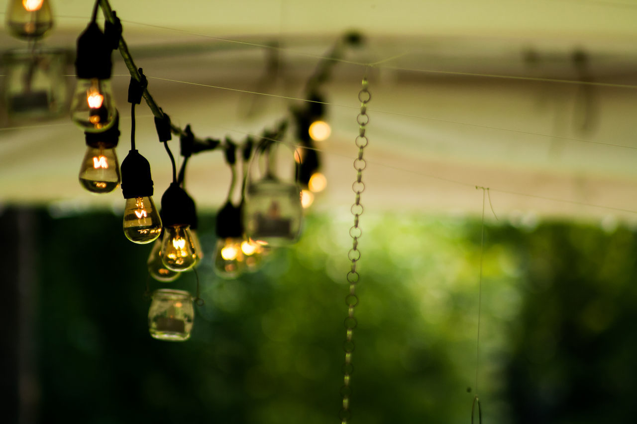 hanging, focus on foreground, selective focus, close-up, no people, nature, outdoors, day