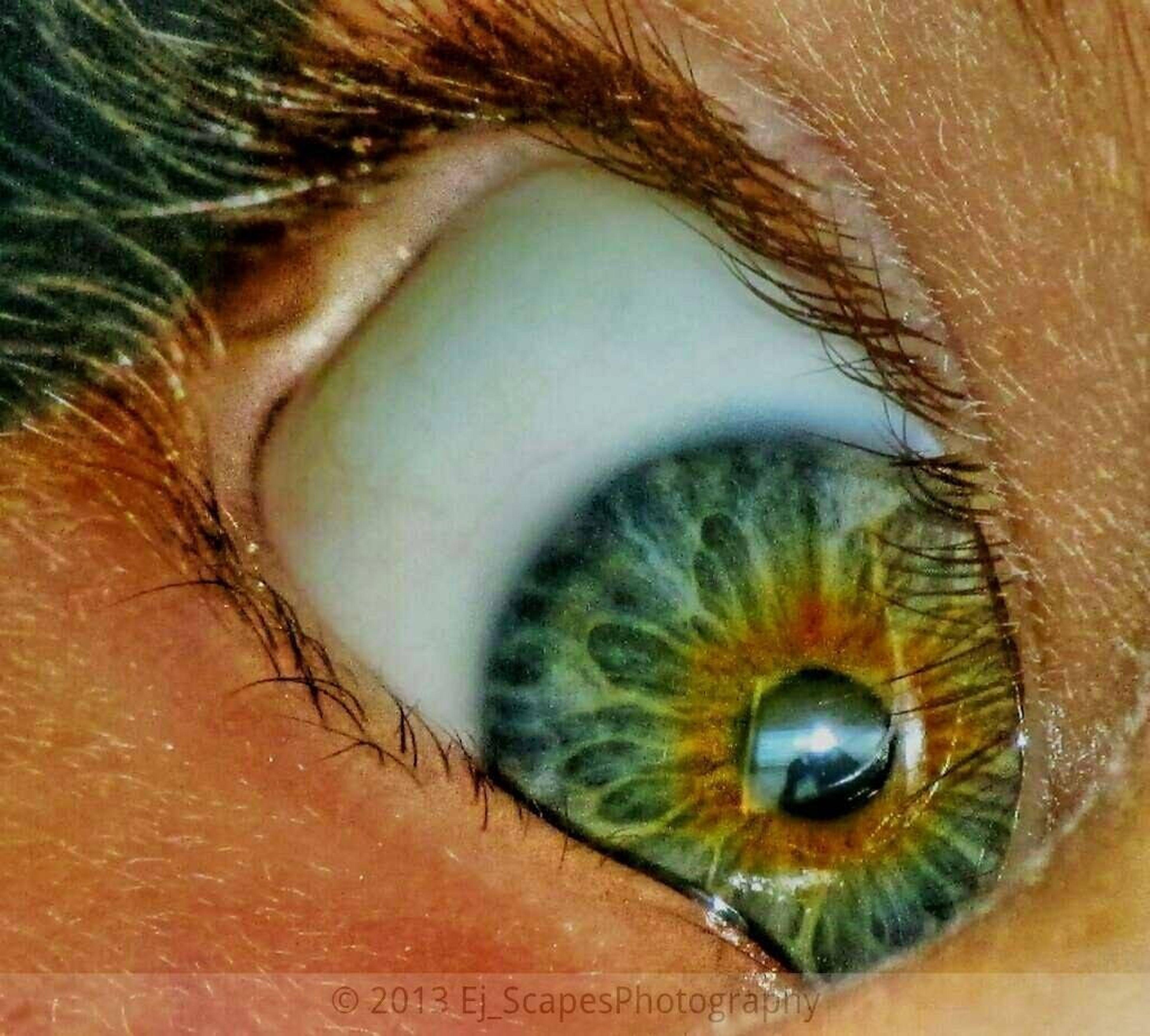 My daughter eye. EyeEm Best Edits Macro EyeEm Best Shots - HDR