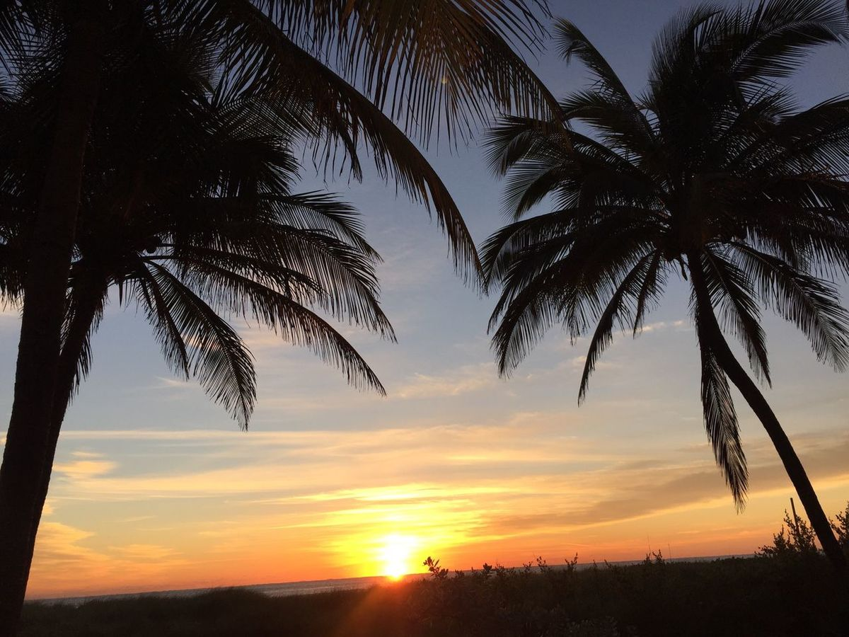 EyeEm Best Shots - Sunsets + Sunrise Sunrise_sunsets_aroundworld Sunrise Silhouette Sunrise Porn Sunrise Miami Beach Sunrise N Sunsets Worldwide