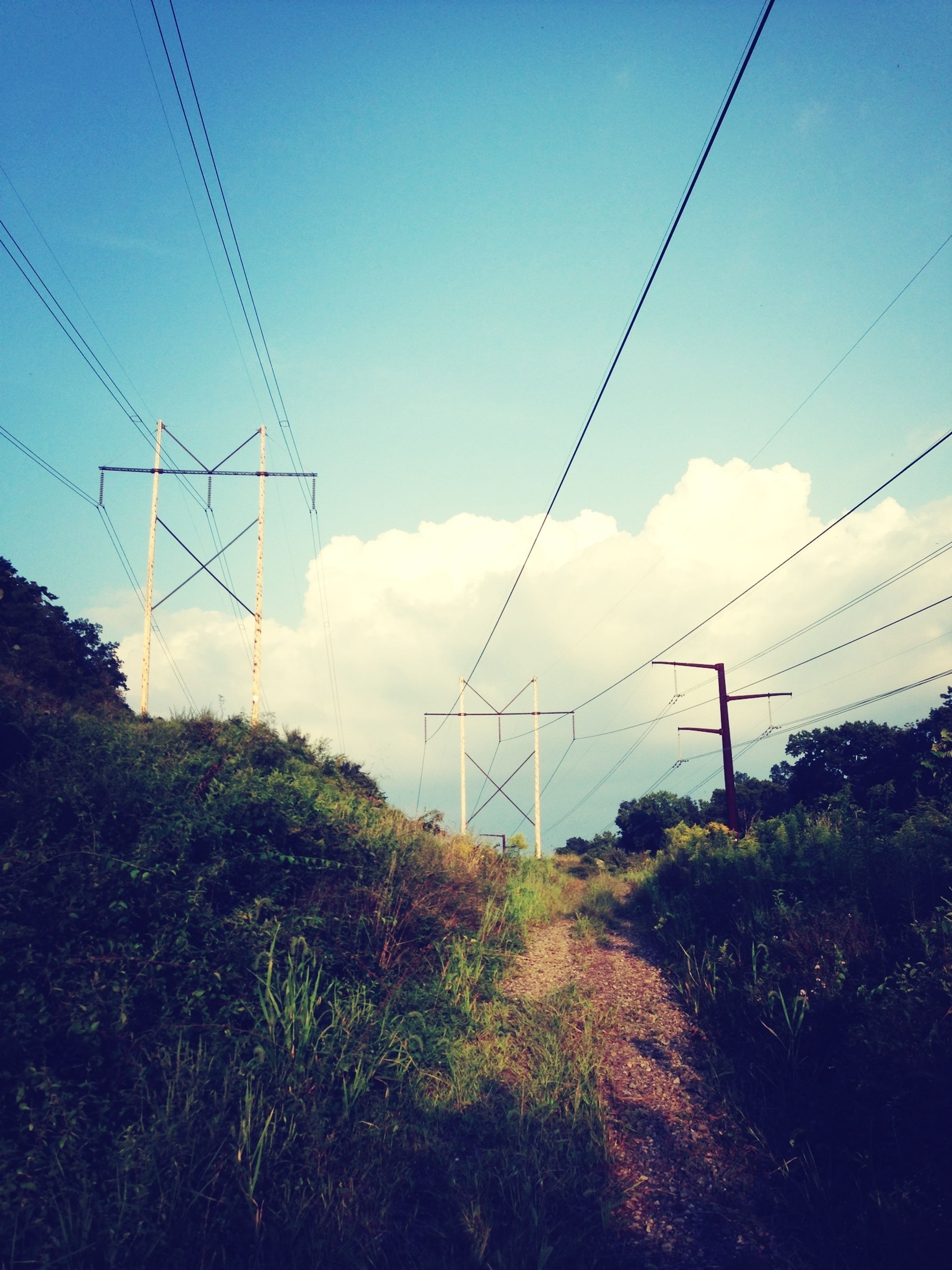 power line, electricity pylon, electricity, power supply, cable, connection, fuel and power generation, sky, power cable, technology, transportation, tree, nature, outdoors, landscape, telephone line, no people, day, telephone pole, cloud - sky