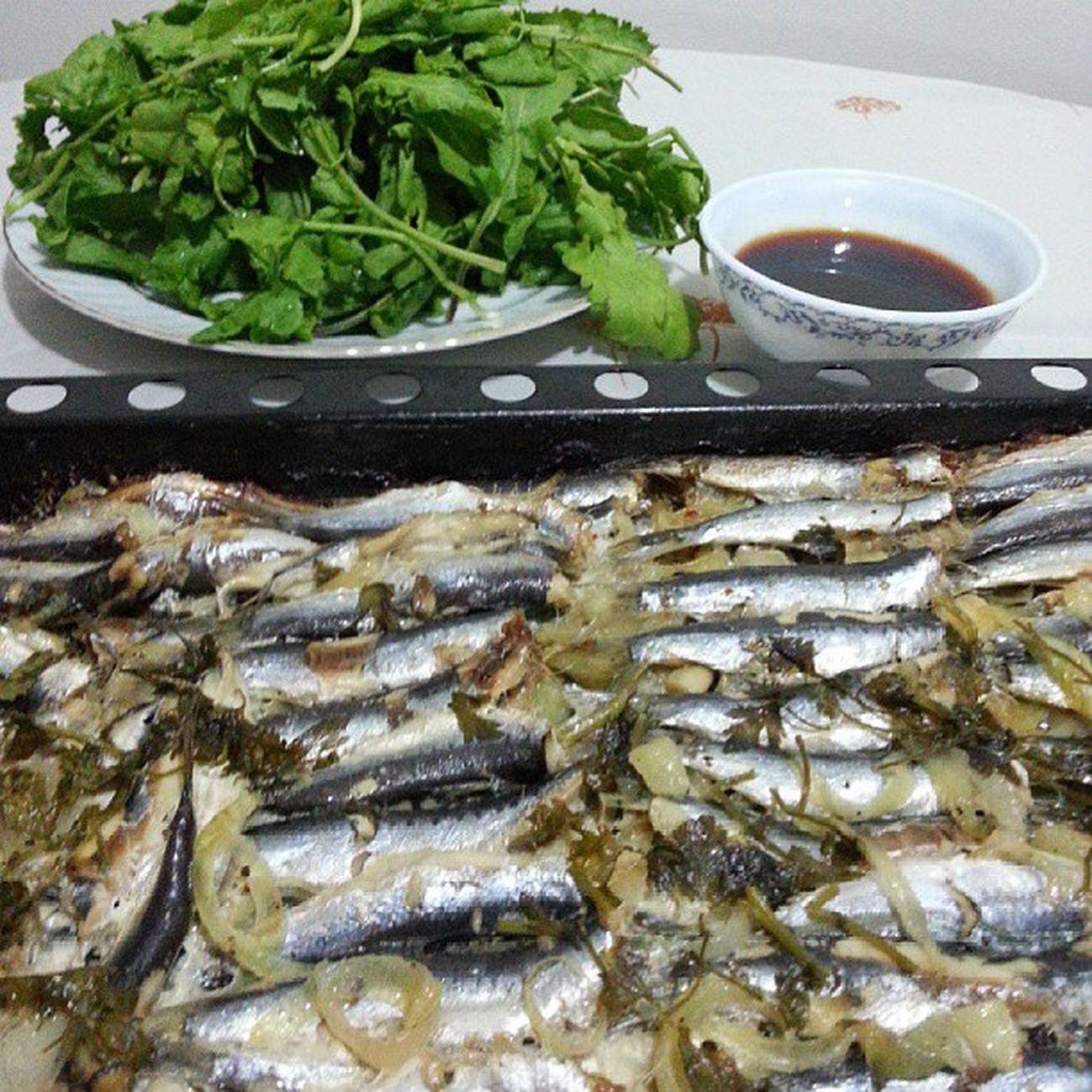 Firin Sardalya miss Balik Fish