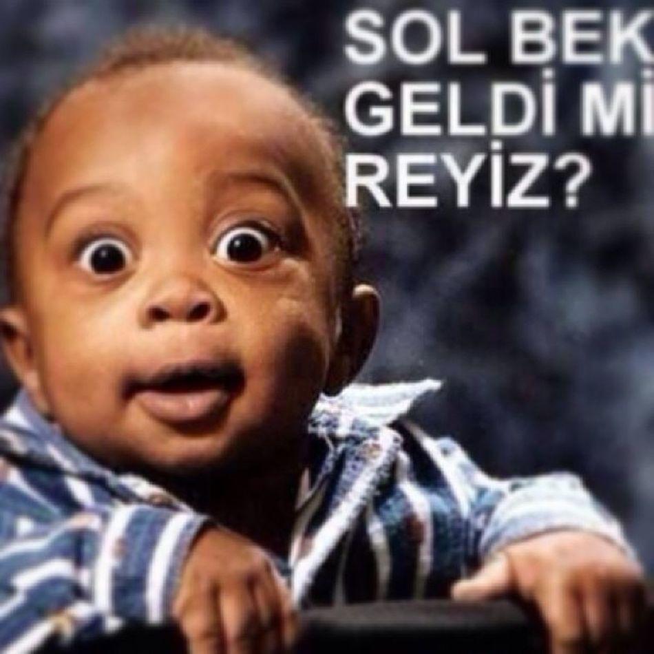 SolBek