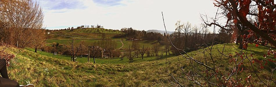 Nature Outdoors Landscape No People Panoramic Switzerland❤️ Zofingen Ilovephotography Broke Butistillsmile First Eyeem Photo