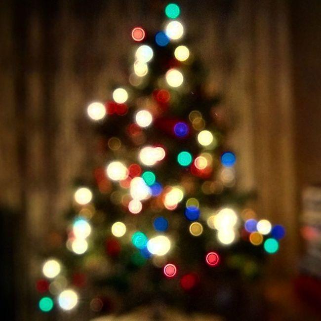 Homályos karácsony! Christmass Christmasstree Tree Karacsony Holiday Marrychristmass Homedecor Family Happy Surprise Cookie Turkey Gift
