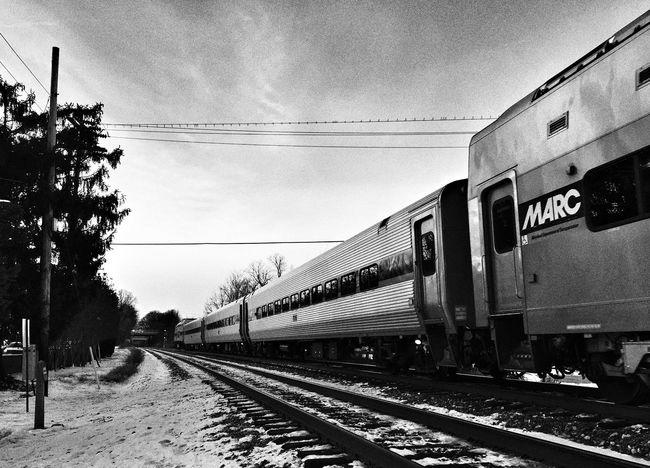 Blackandwhite Monochrome Black And White Public Transportation