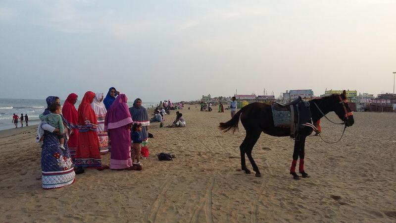 Baji at the Beach - Muslim ladies enjoy an evening at Elliots Beach in Chennai dressed in colourful traditional muslim clothing. Beach Beach Life Burka  Colourful Day Enjoyment Horizon Over Water Horse India Ladies Large Group Of People Leisure Activity Lifestyles Muslim Outdoors People Of The Oceans Scenics Sea Shore Sky Tourism Tourist Traditional Clothing Vacations Showcase June