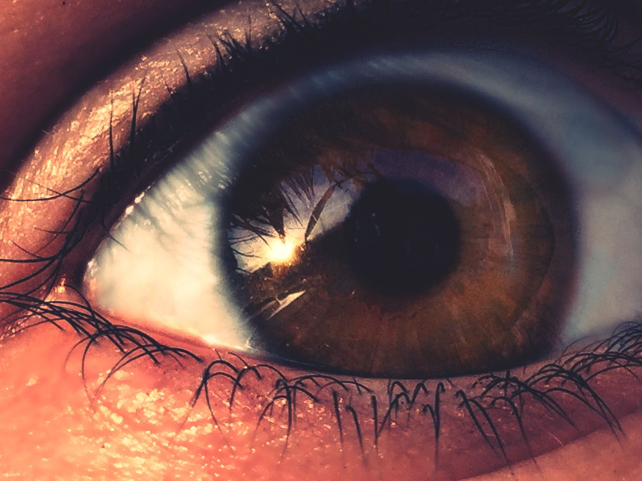 my eye for you 🌊 Human Eye Eyelash Eyesight Sensory Perception Real People Human Body Part Close-up Extreme Close-up Unrecognizable Person Iris - Eye One Person First Eyeem Photo