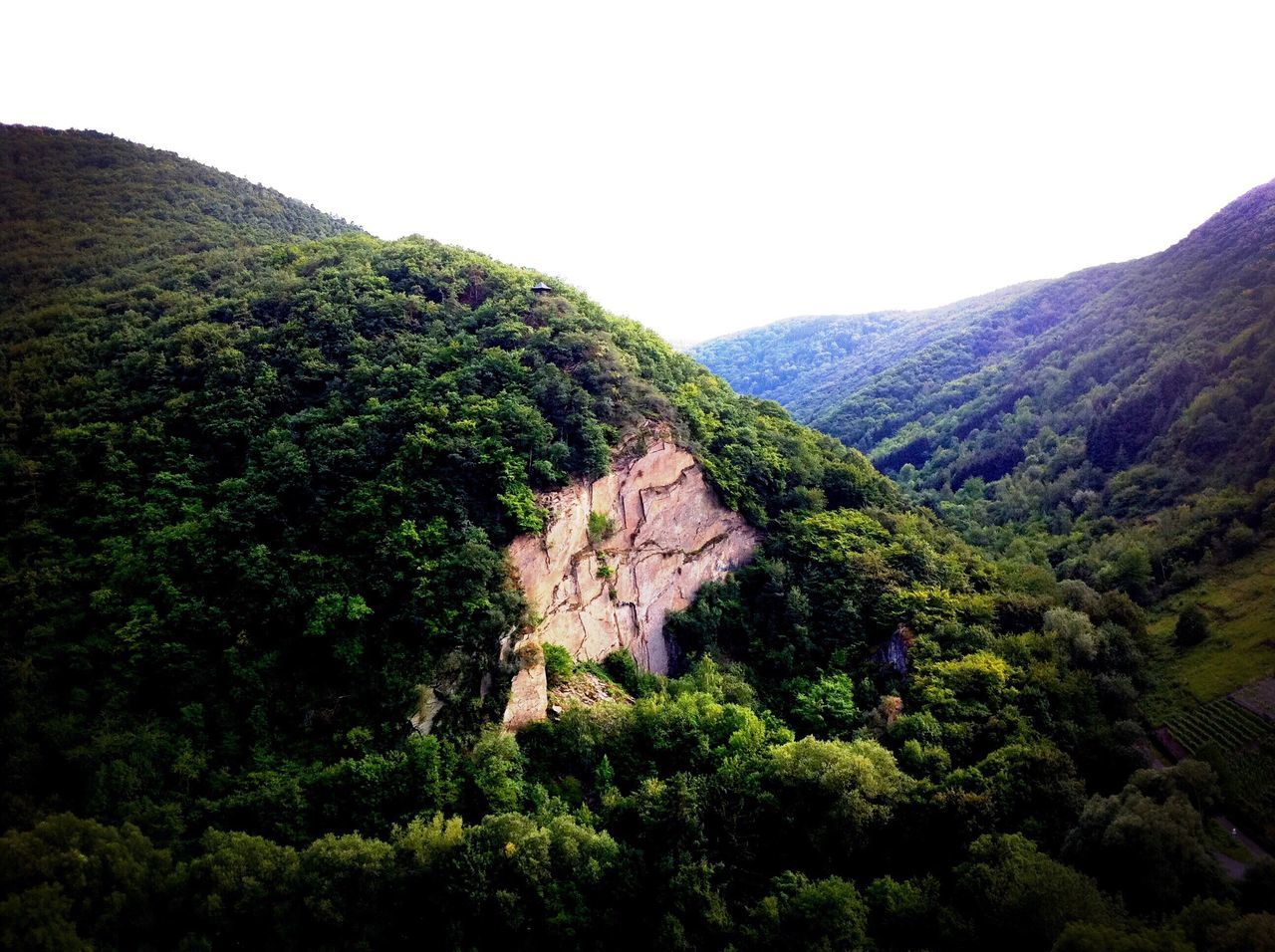 Flying High Nature Landscape Mountain Beauty In Nature Scenics Tranquility Tranquil Scene Mountain Peak Forest Outdoors View From Above New Perspectives High Angle View Aerial View EyeEm Nature Lover